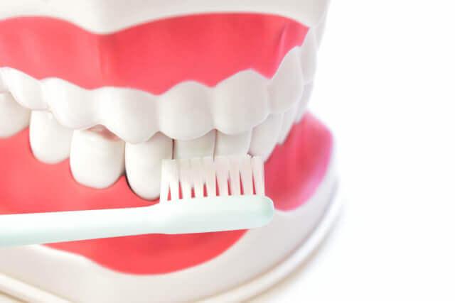 歯みがき方法