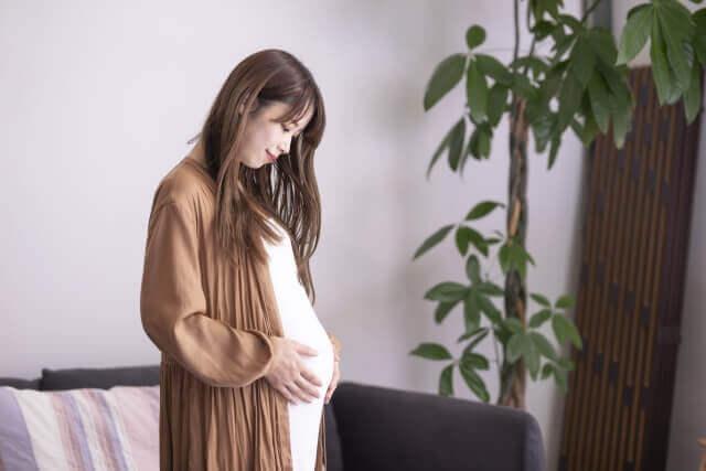 妊娠中のイメージ